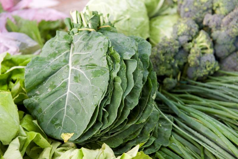 collards-food-herzegovina